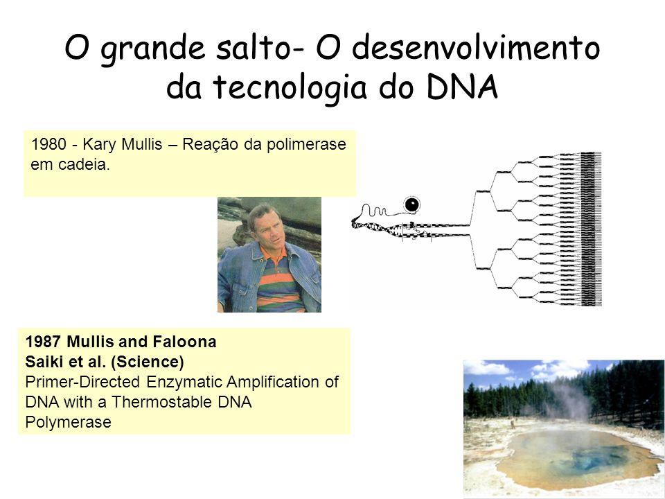 O grande salto- O desenvolvimento da tecnologia do DNA