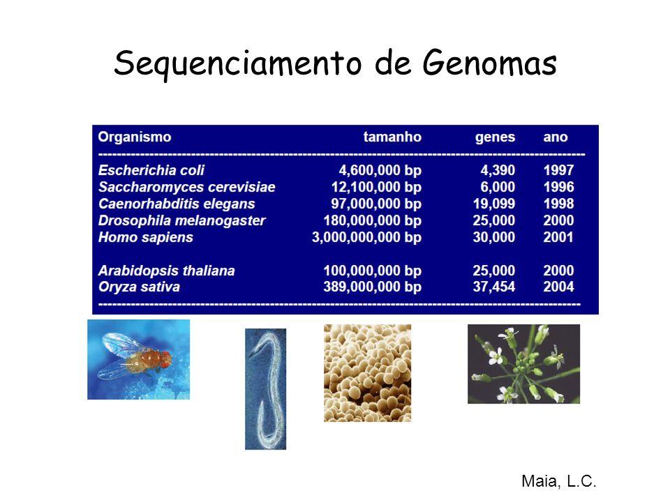 Sequenciamento de Genomas