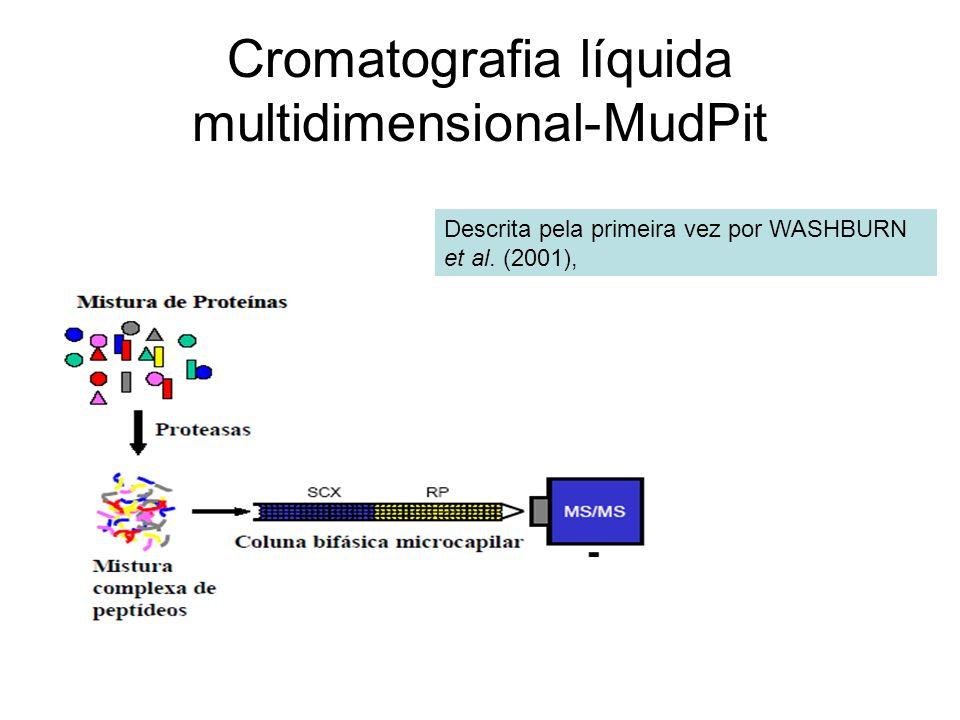 Cromatografia líquida multidimensional-MudPit
