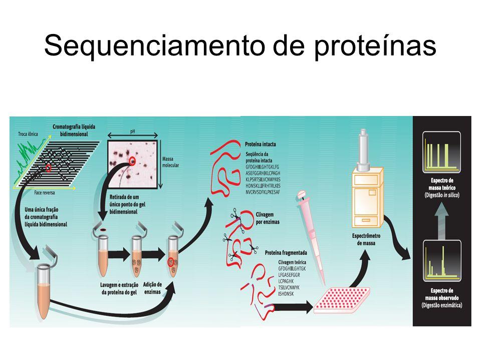 Sequenciamento de proteínas