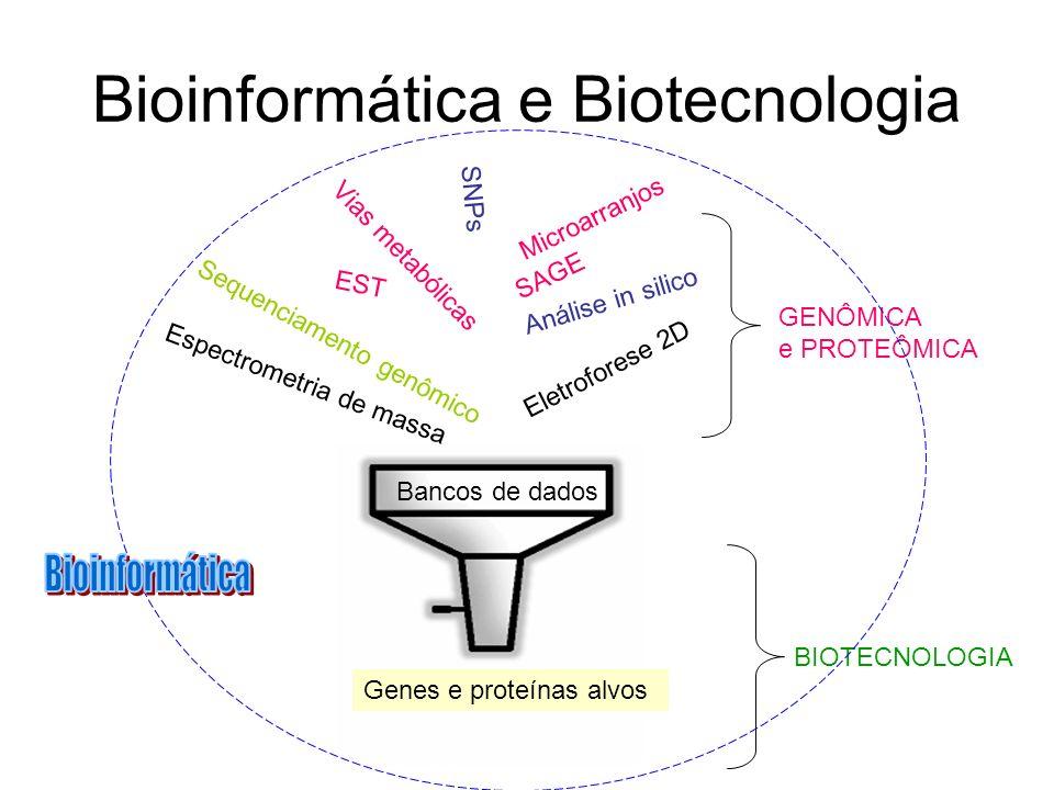 Bioinformática e Biotecnologia