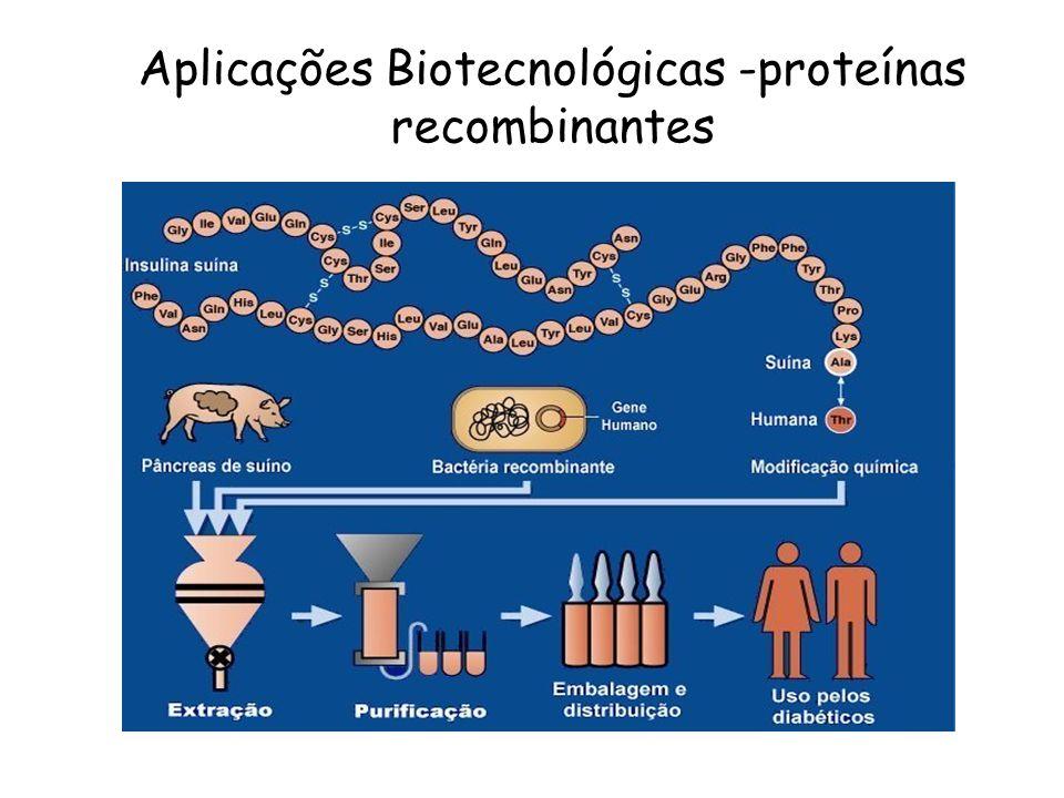 Aplicações Biotecnológicas -proteínas recombinantes