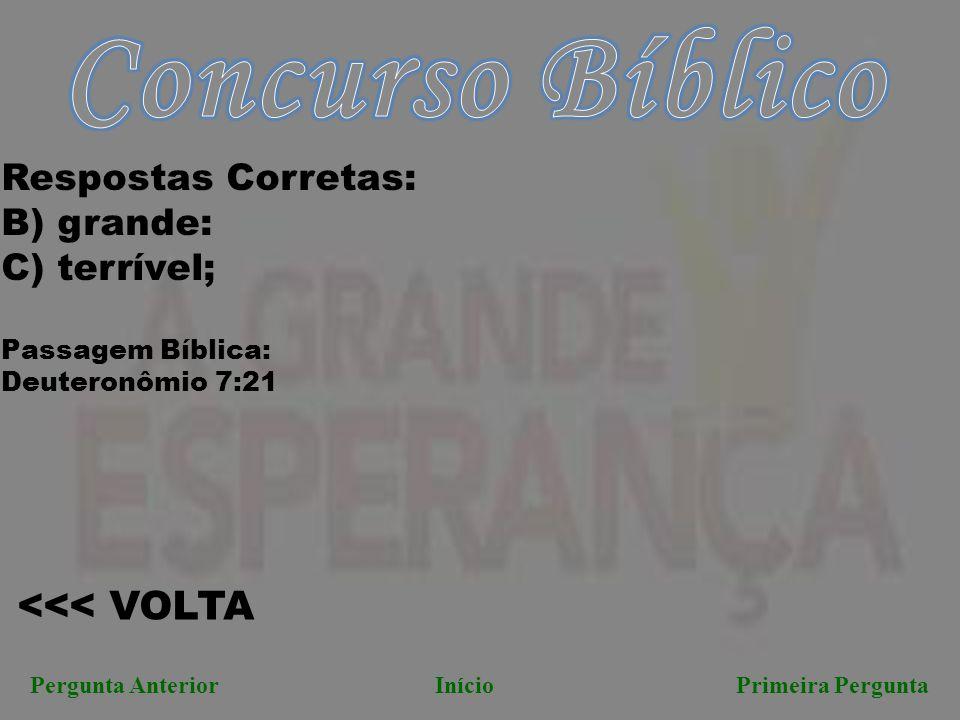 Concurso Bíblico <<< VOLTA Respostas Corretas: B) grande: