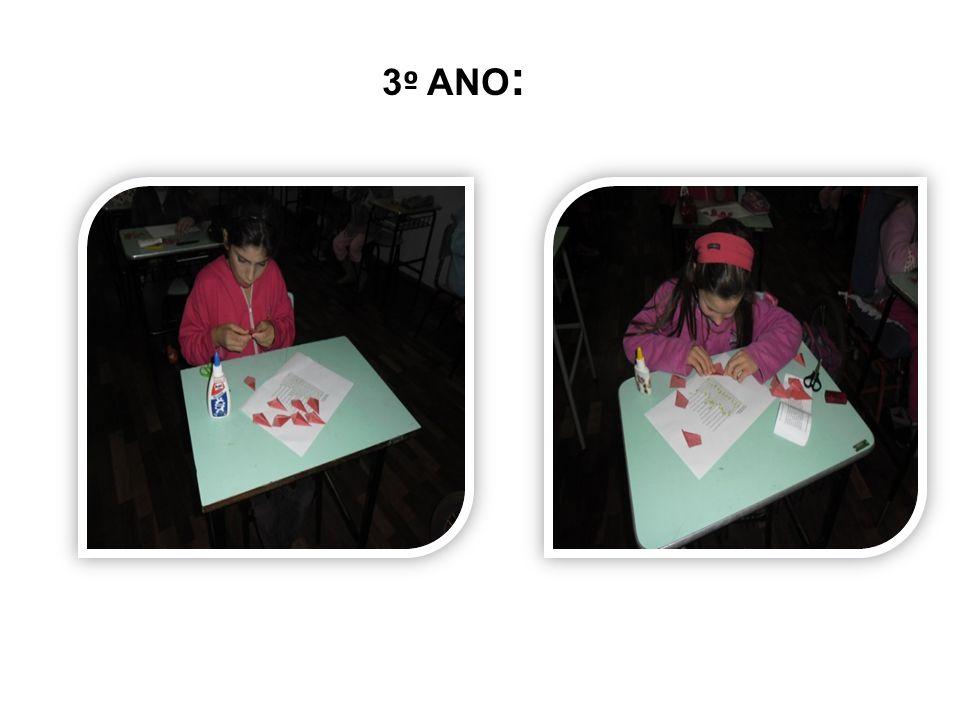 3º ANO: