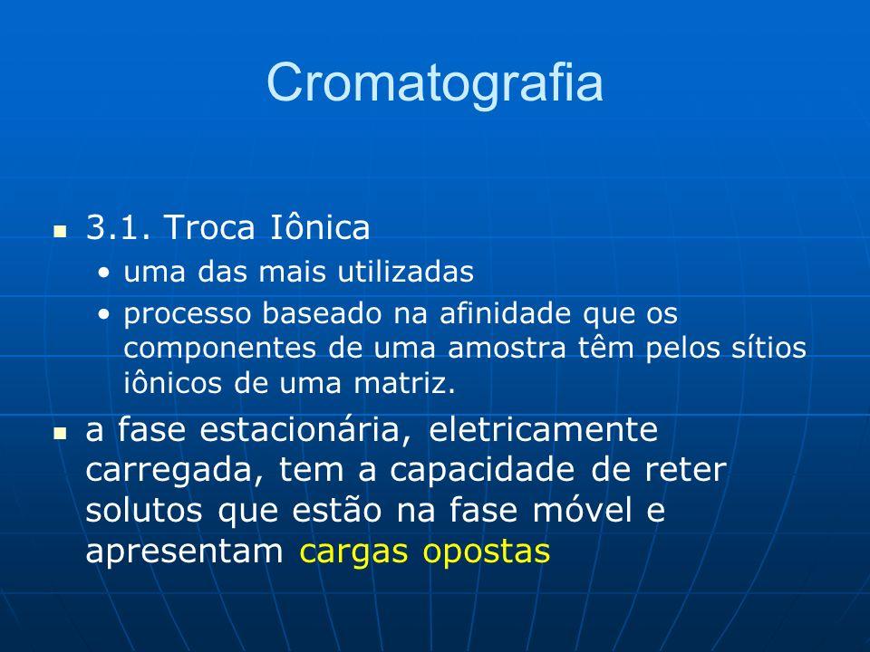 Cromatografia 3.1. Troca Iônica