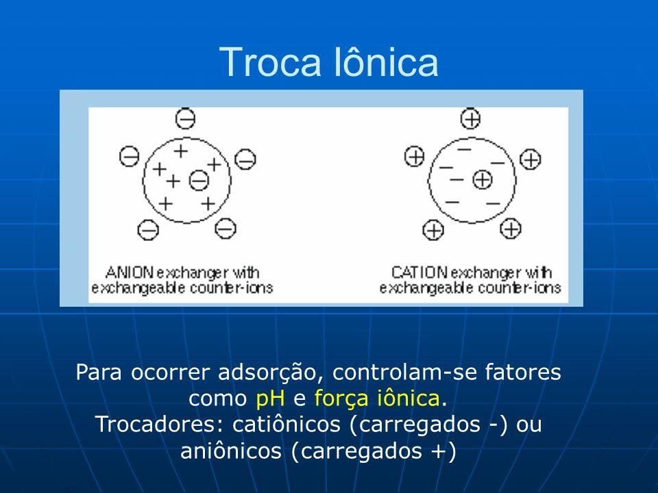 Troca Iônica Para ocorrer adsorção, controlam-se fatores como pH e força iônica.