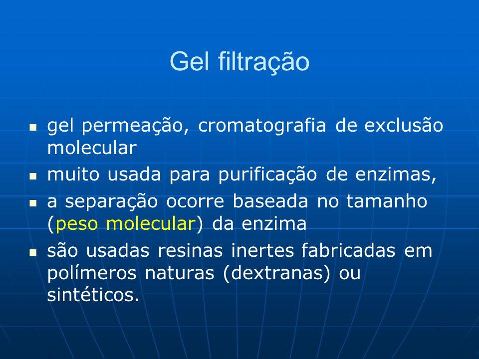 Gel filtração gel permeação, cromatografia de exclusão molecular