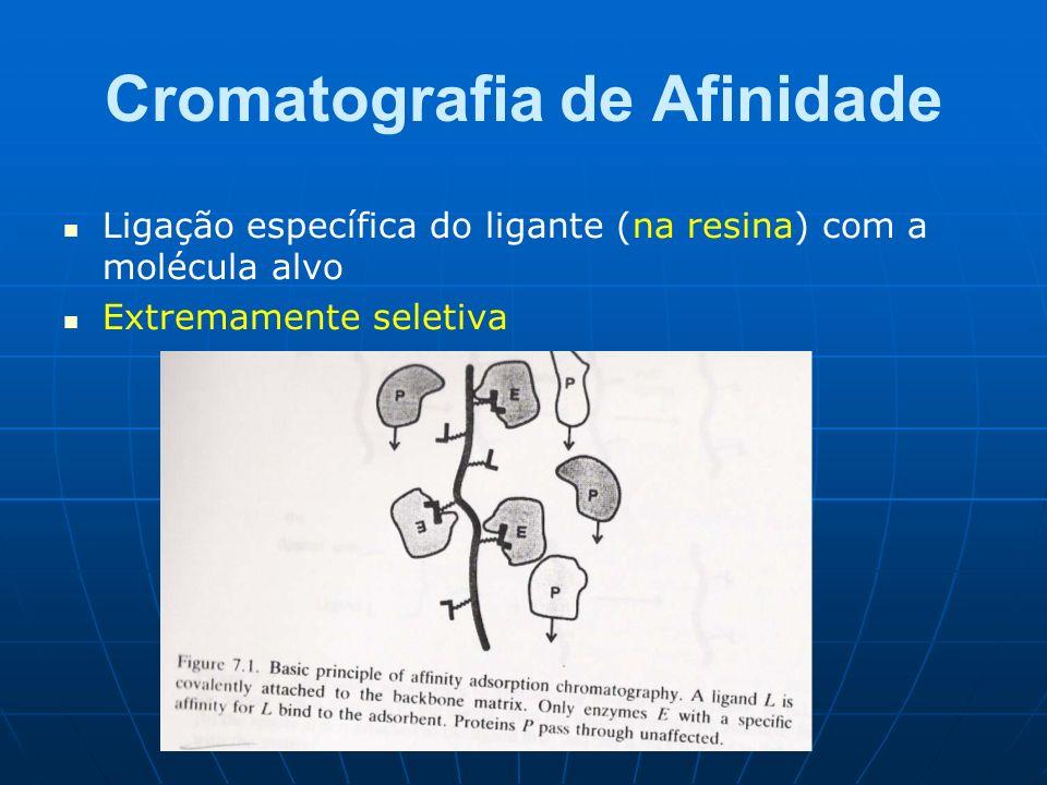 Cromatografia de Afinidade