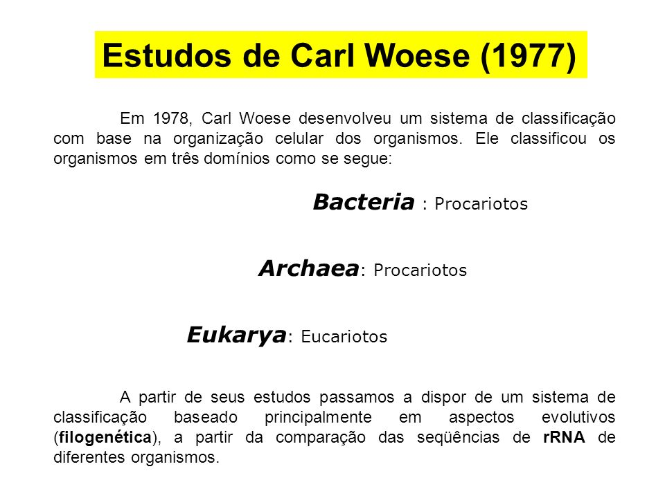 Estudos de Carl Woese (1977)