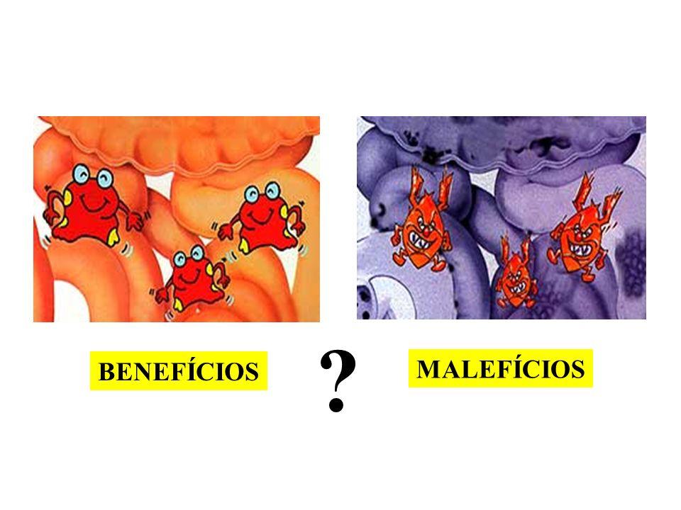 BENEFÍCIOS MALEFÍCIOS