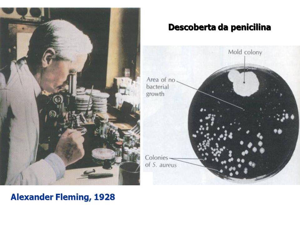 Descoberta da penicilina