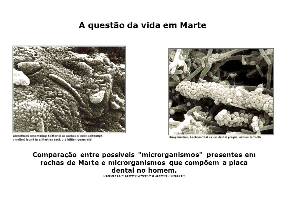 A questão da vida em Marte
