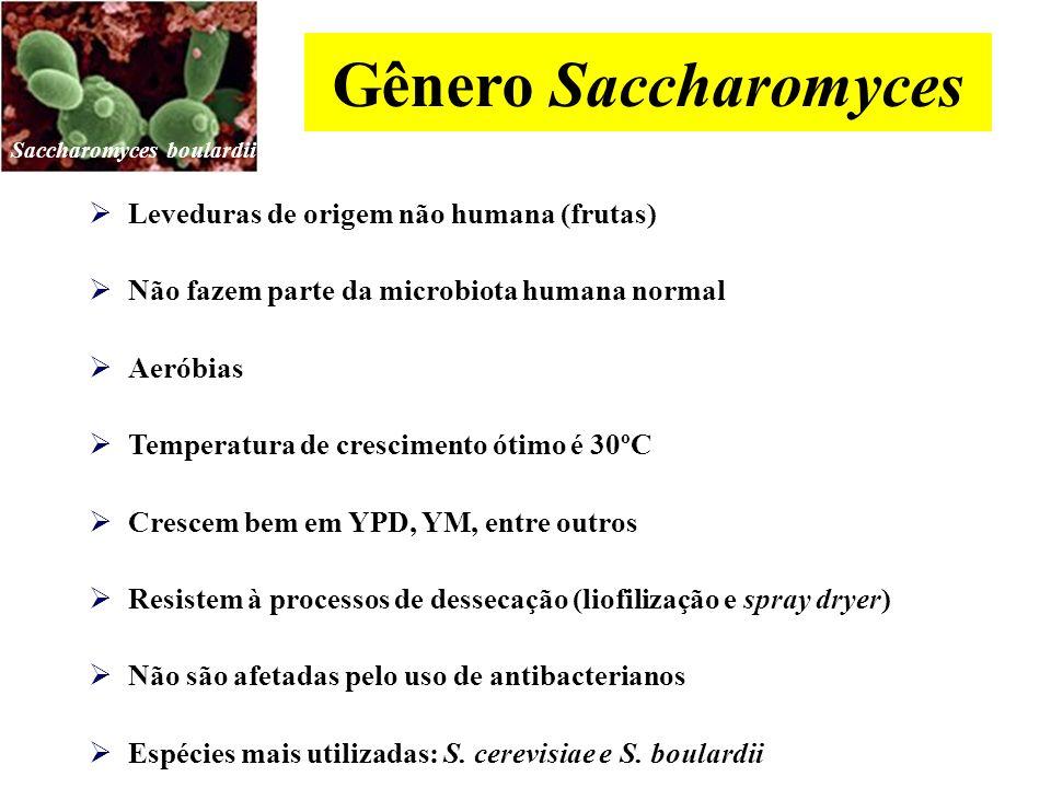 Gênero Saccharomyces Leveduras de origem não humana (frutas)