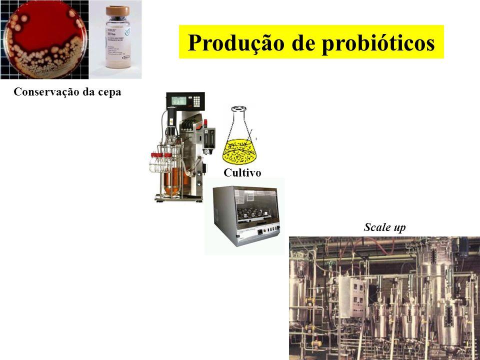 Produção de probióticos
