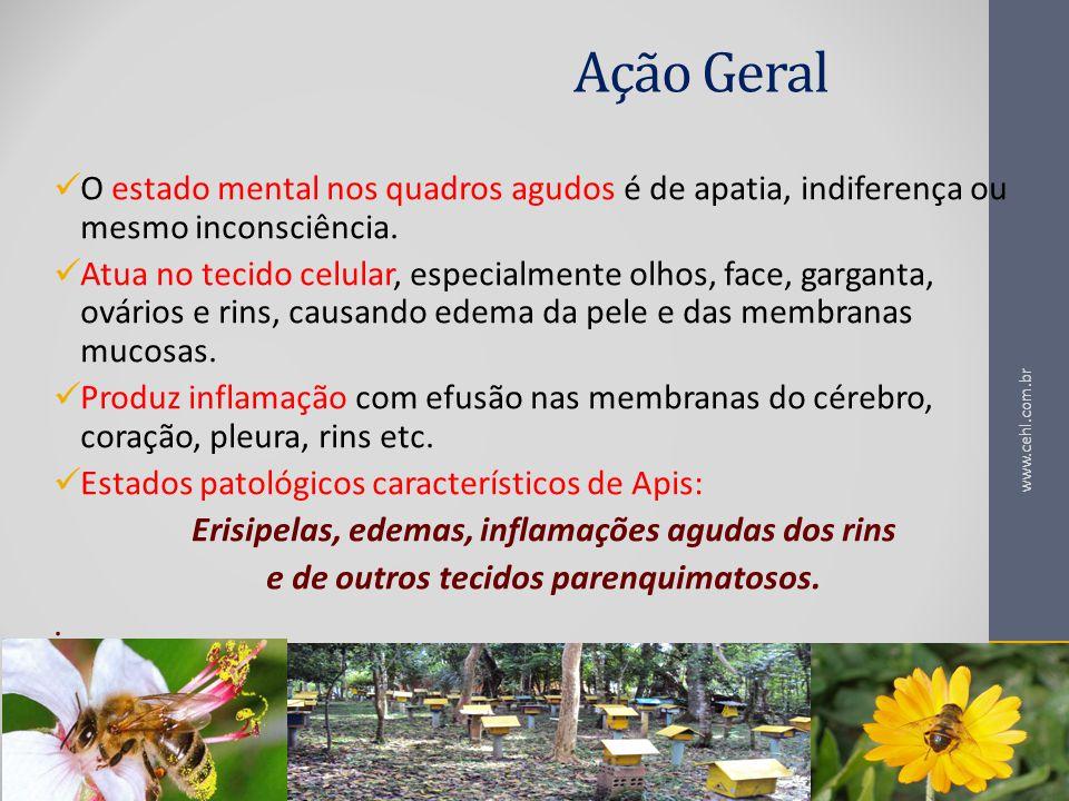 Ação Geral O estado mental nos quadros agudos é de apatia, indiferença ou mesmo inconsciência.