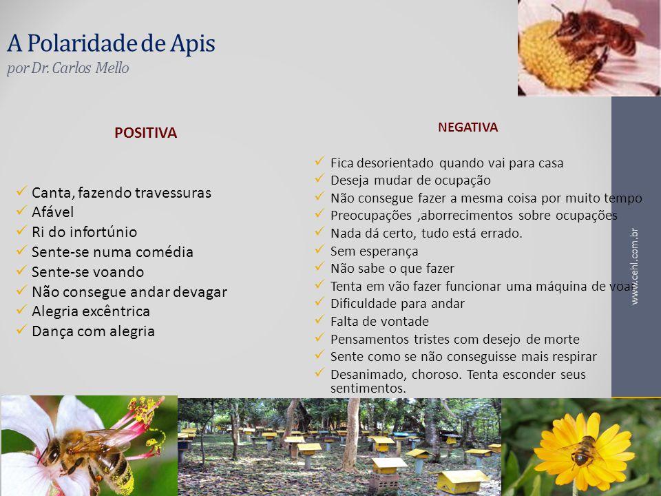A Polaridade de Apis por Dr. Carlos Mello