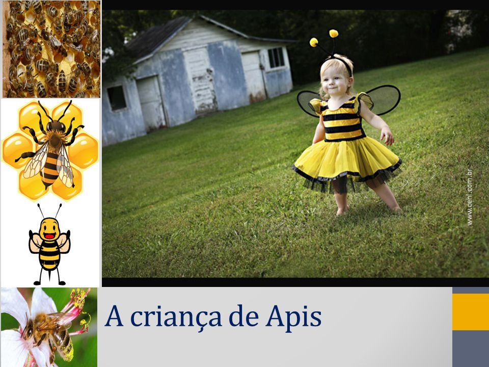 www.cehl.com.br A criança de Apis