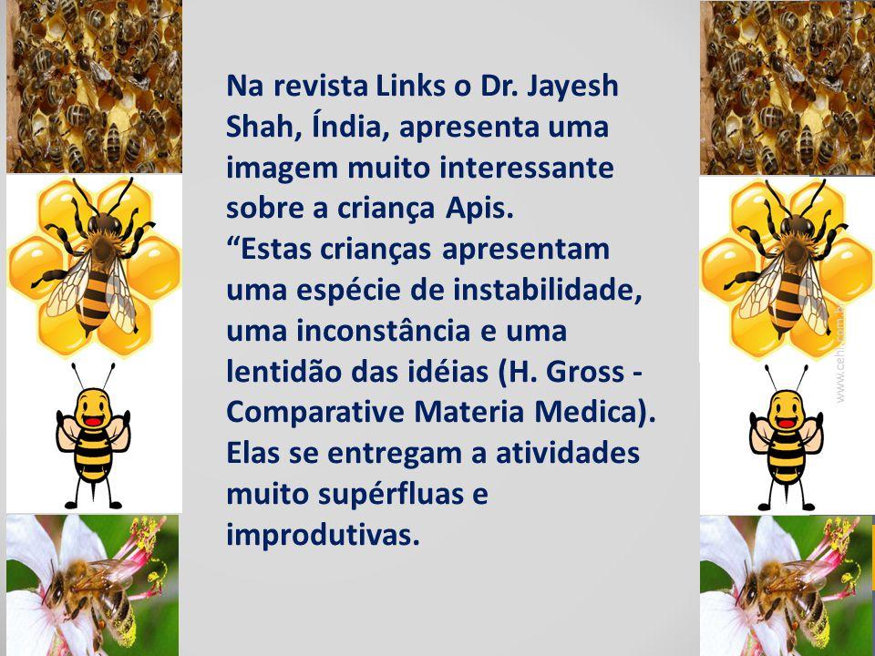 Na revista Links o Dr. Jayesh Shah, Índia, apresenta uma imagem muito interessante sobre a criança Apis.