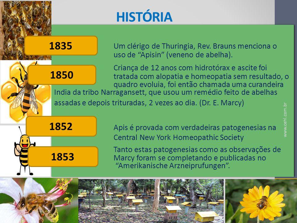 história Um clérigo de Thuringia, Rev. Brauns menciona o uso de Apisin (veneno de abelha).