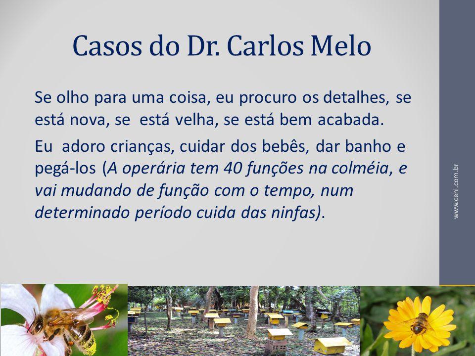 Casos do Dr. Carlos Melo Se olho para uma coisa, eu procuro os detalhes, se está nova, se está velha, se está bem acabada.