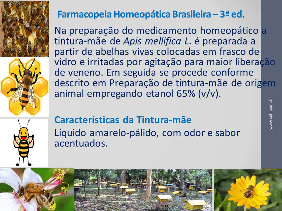 Farmacopeia Homeopática Brasileira – 3ª ed.