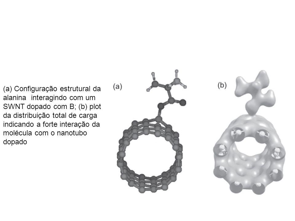 (a) Configuração estrutural da alanina interagindo com um SWNT dopado com B; (b) plot da distribuição total de carga indicando a forte interação da molécula com o nanotubo dopado