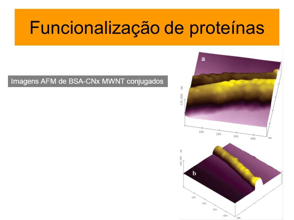 Funcionalização de proteínas