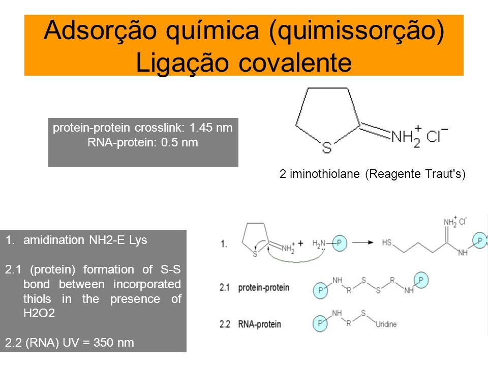 Adsorção química (quimissorção) Ligação covalente