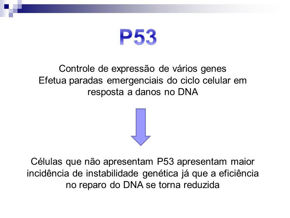 Controle de expressão de vários genes