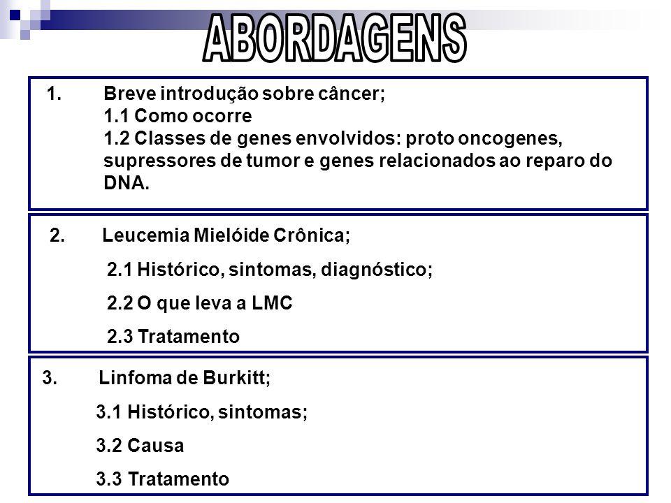 ABORDAGENS 3. Linfoma de Burkitt;