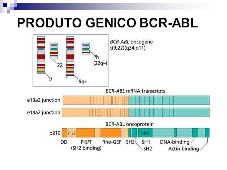 PRODUTO GENICO BCR-ABL