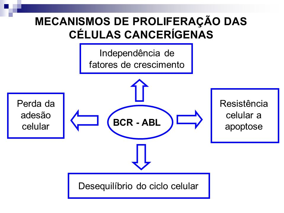 MECANISMOS DE PROLIFERAÇÃO DAS CÉLULAS CANCERÍGENAS