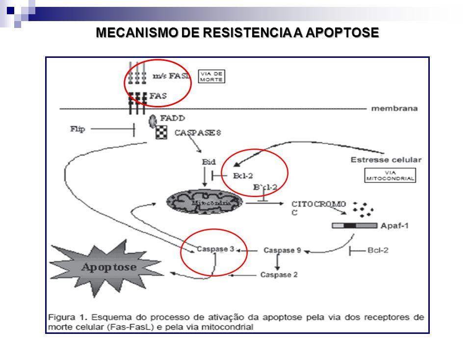 MECANISMO DE RESISTENCIA A APOPTOSE