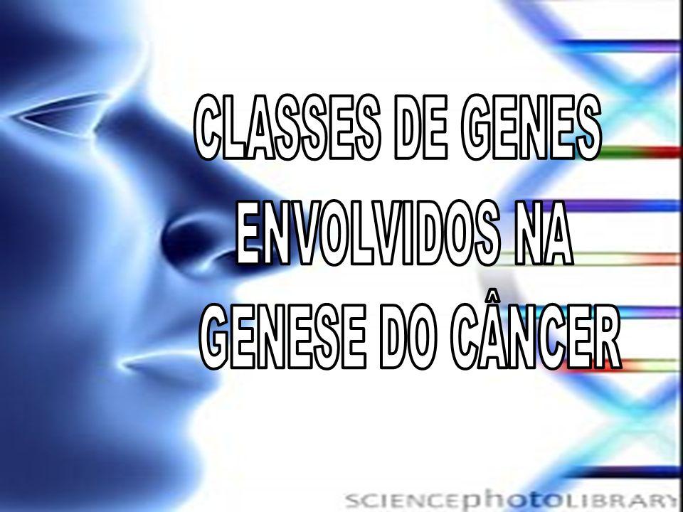CLASSES DE GENES ENVOLVIDOS NA GENESE DO CÂNCER