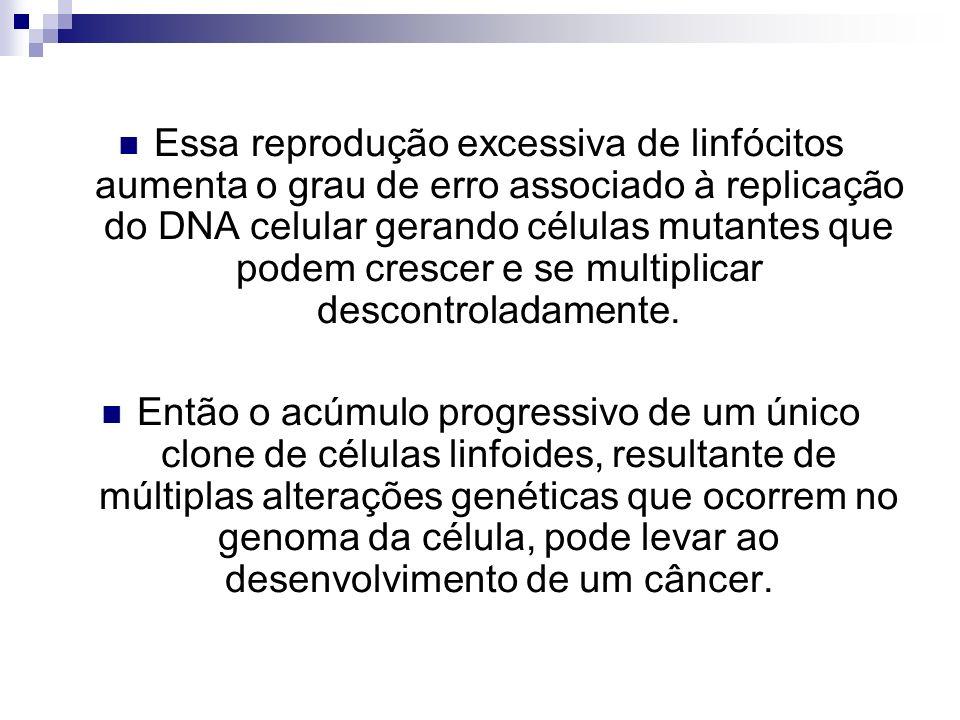 Essa reprodução excessiva de linfócitos aumenta o grau de erro associado à replicação do DNA celular gerando células mutantes que podem crescer e se multiplicar descontroladamente.