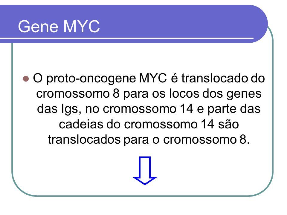 Gene MYC
