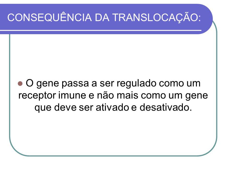 CONSEQUÊNCIA DA TRANSLOCAÇÃO: