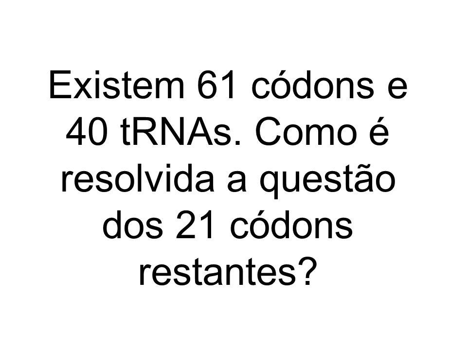 3/25/2017 Existem 61 códons e 40 tRNAs. Como é resolvida a questão dos 21 códons restantes