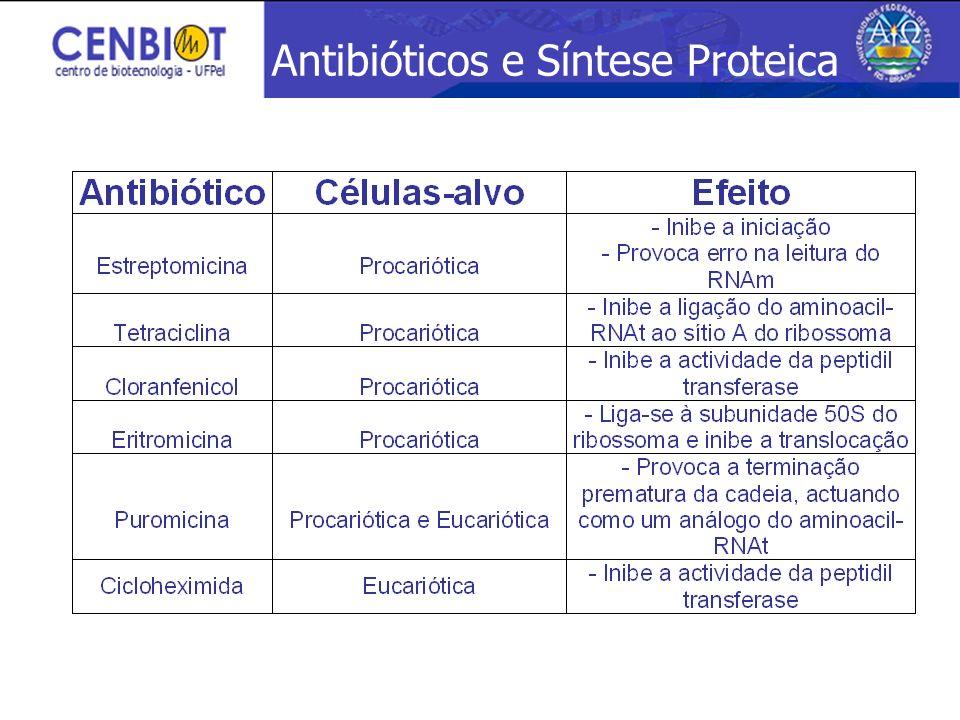 Antibióticos e Síntese Proteica