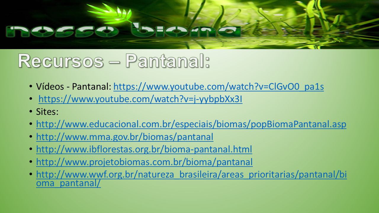 Recursos – Pantanal: Vídeos - Pantanal: https://www.youtube.com/watch v=ClGvO0_pa1s. https://www.youtube.com/watch v=j-yybpbXx3I.