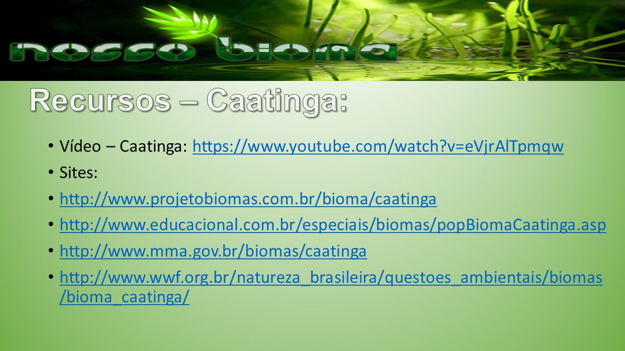 Recursos – Caatinga: Vídeo – Caatinga: https://www.youtube.com/watch v=eVjrAlTpmqw. Sites: http://www.projetobiomas.com.br/bioma/caatinga.