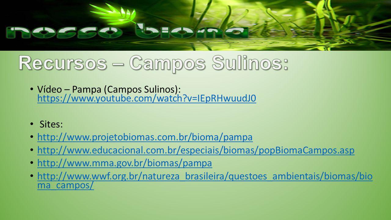 Recursos – Campos Sulinos: