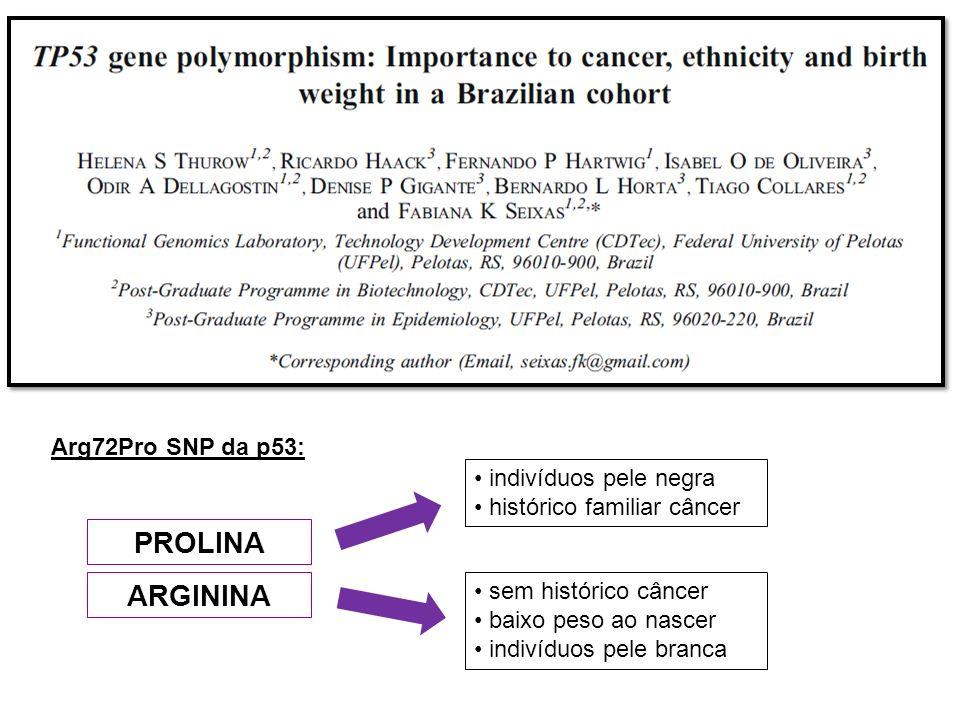PROLINA ARGININA Arg72Pro SNP da p53: indivíduos pele negra