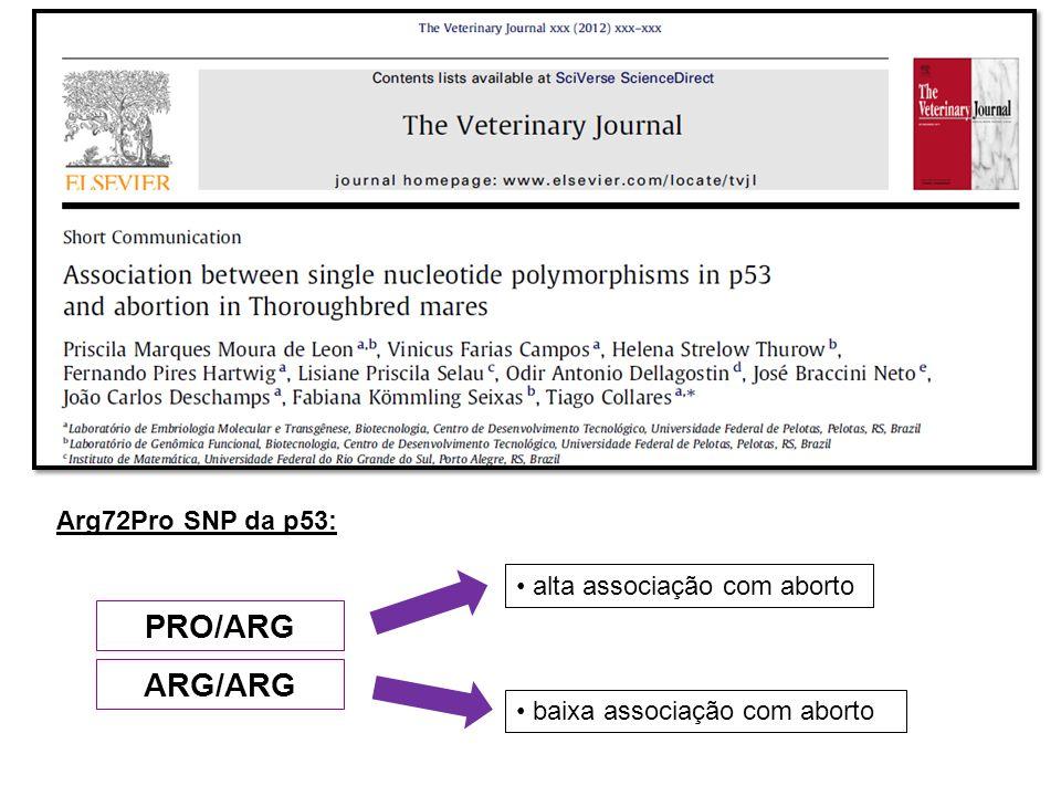 PRO/ARG ARG/ARG Arg72Pro SNP da p53: alta associação com aborto