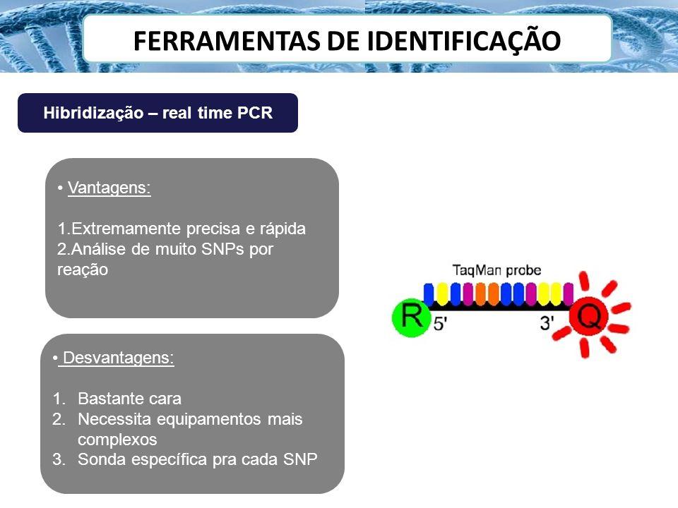 FERRAMENTAS DE IDENTIFICAÇÃO Hibridização – real time PCR