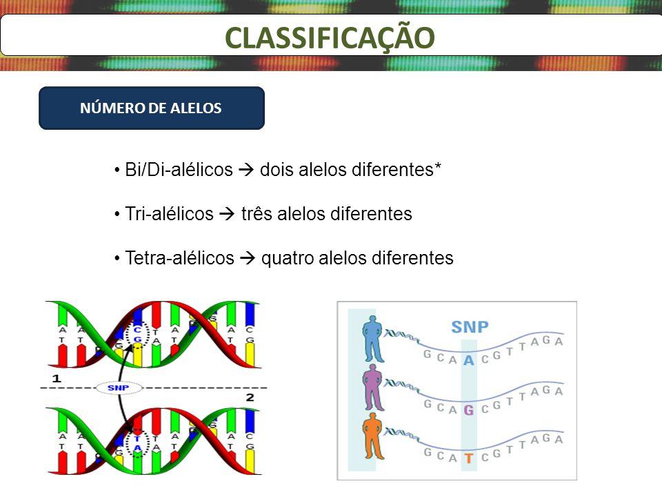 CLASSIFICAÇÃO Bi/Di-alélicos  dois alelos diferentes*