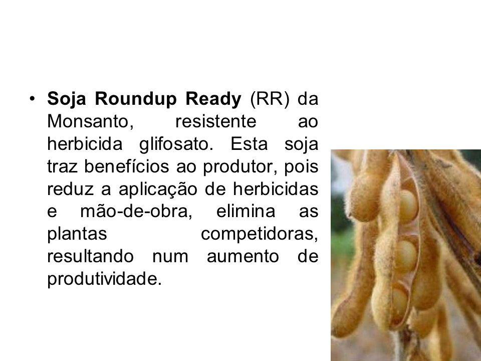 Soja Roundup Ready (RR) da Monsanto, resistente ao herbicida glifosato