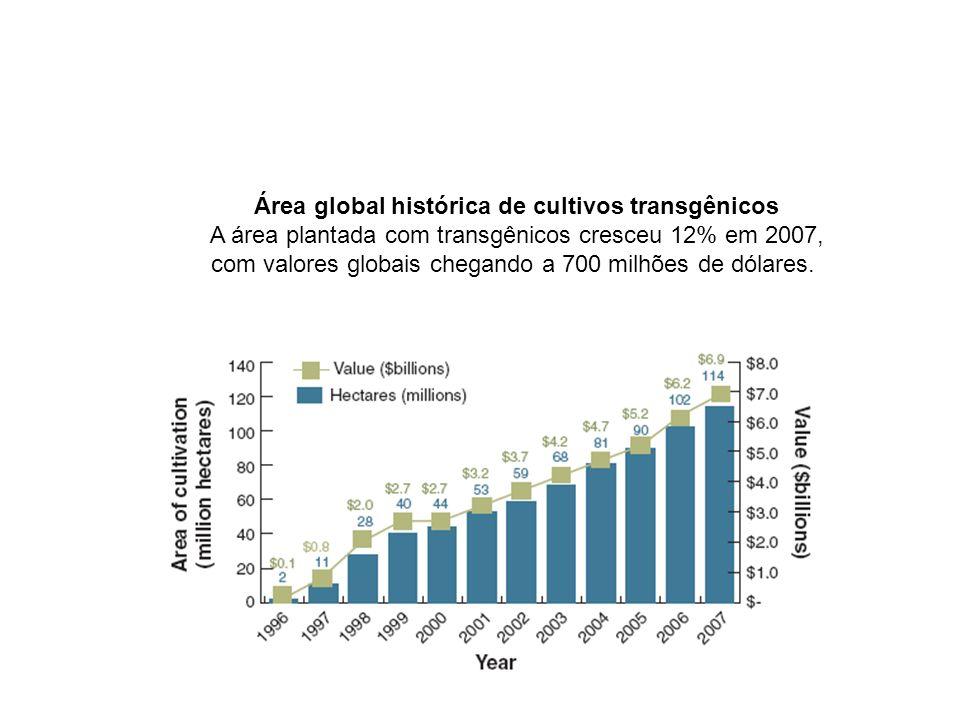 Área global histórica de cultivos transgênicos