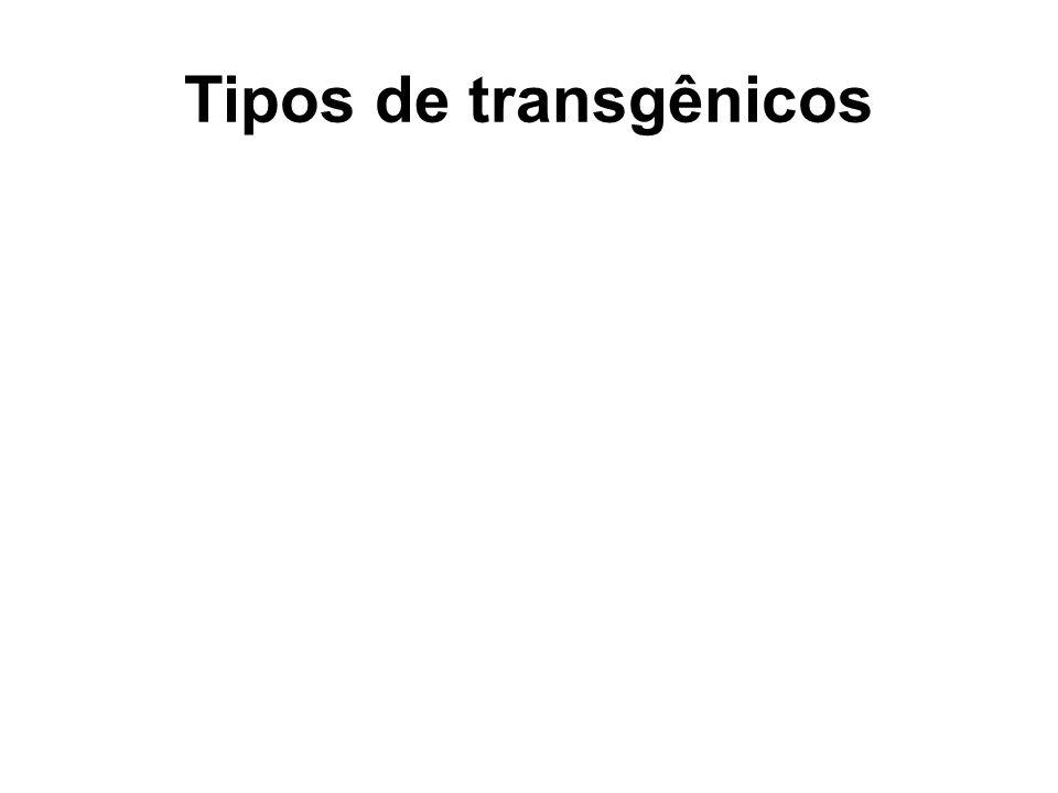Tipos de transgênicos