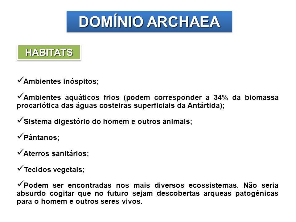 DOMÍNIO ARCHAEA HABITATS Ambientes inóspitos;